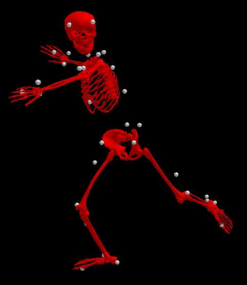 Skelett_3